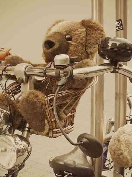 Dillema   Een auto, een fiets of misschien wel een bakfiets?