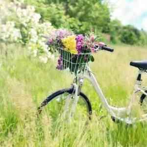 Dromen over een elektrische fiets