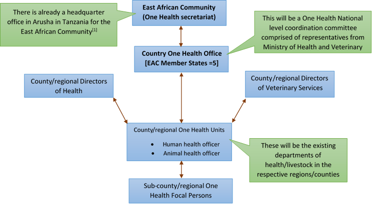 Figure 3: Potential One Health Coordination model among EAC Member States (modified from ZDU[3])