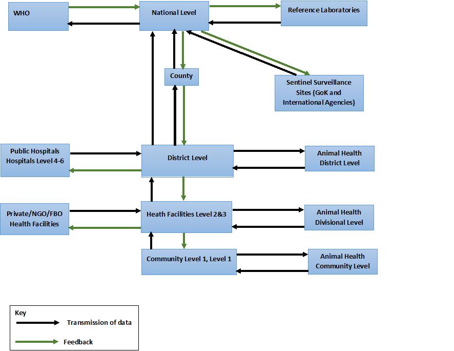 idsr-data-flow