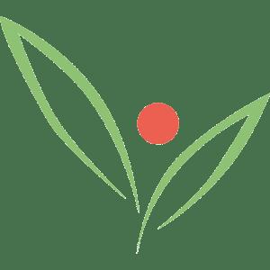 Logo Mombarg Tuinarchitect