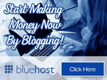 informe de ingresos publicitarios de bluehost