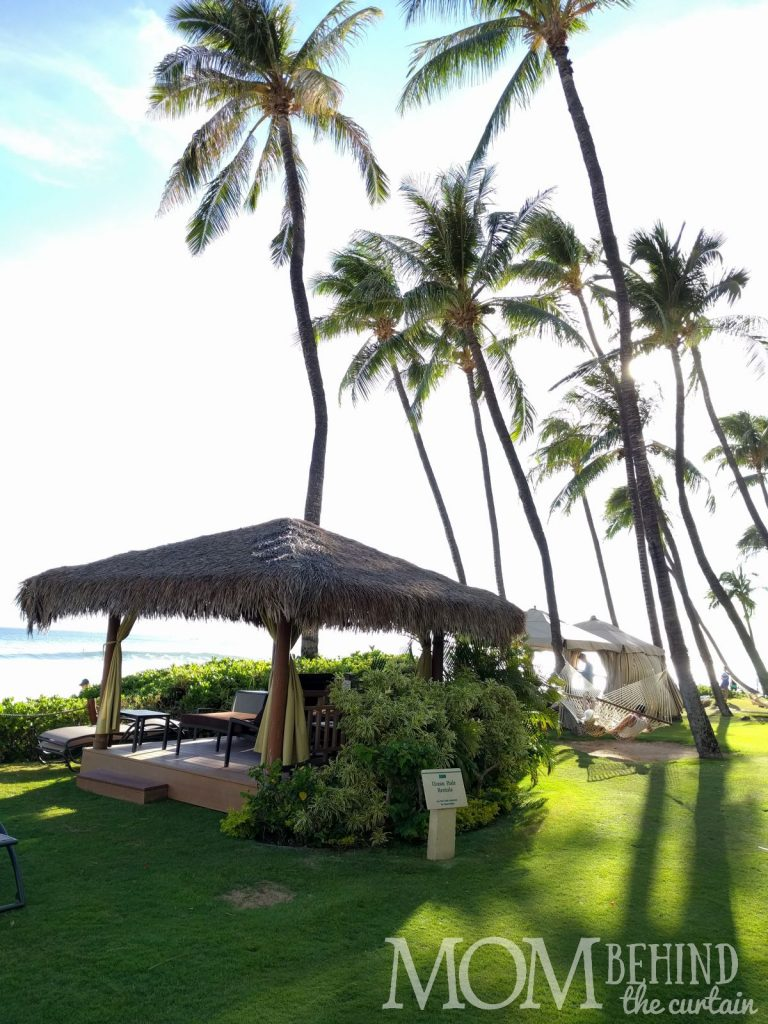 Hyatt Regency Maui beach rental - grass roof