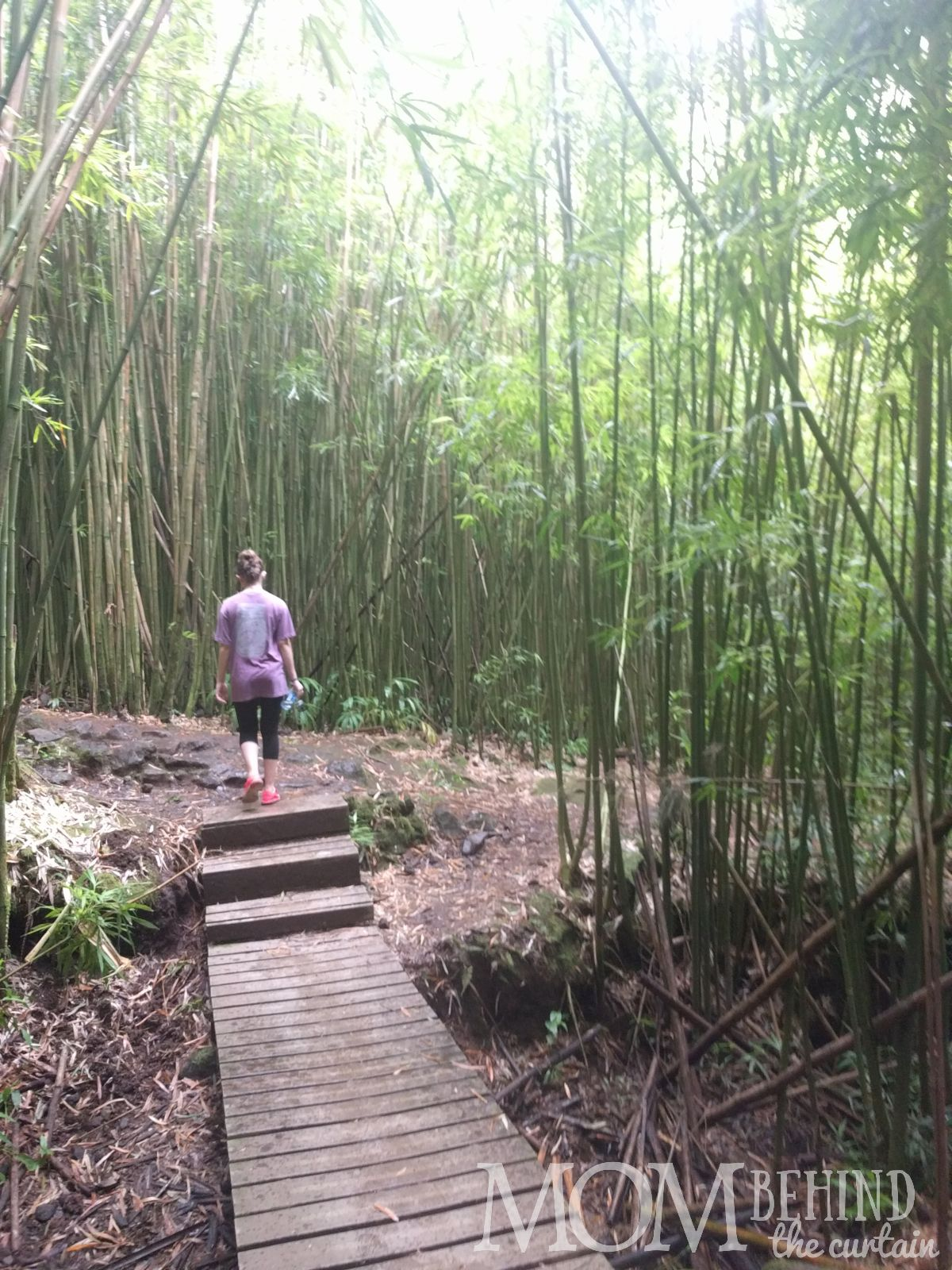 Hiker on the boardwalk that goes through part of the Bamboo Forest on Maui.
