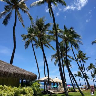Get your cabana on the beach! 23 blog posts to help you plan your best first trip to Maui, Hawaii. Where to stay, what to do, where to eat, WHAT to eat, what to do in Hawaii with teens.