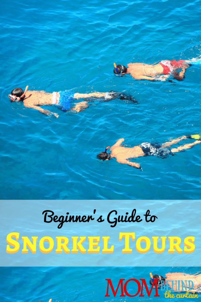 Here's what you need to know before you go on your first snorkeling tour on your family vacation.