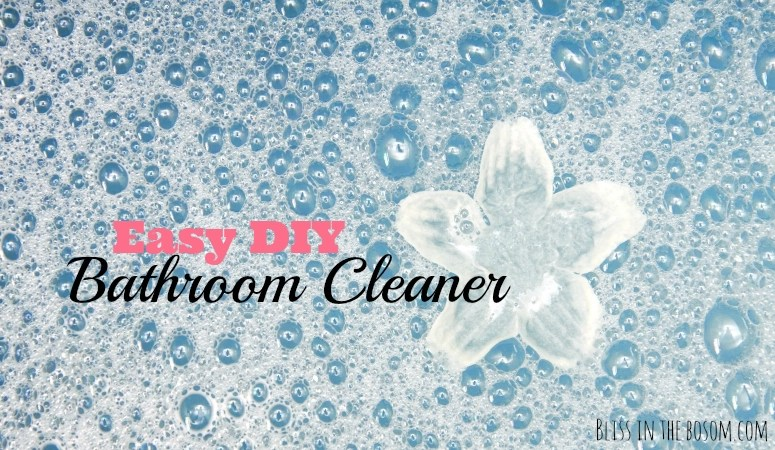 How to make Easy Bathroom Cleaner yourself