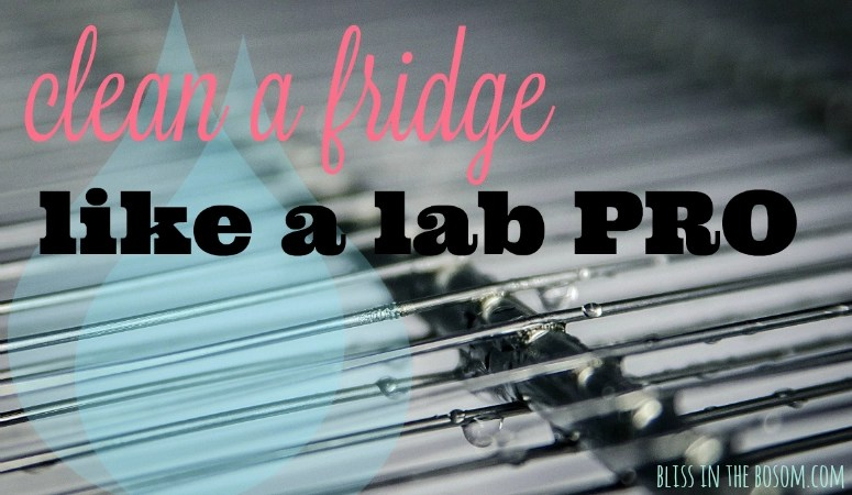How to Really Clean a Fridge like a Lab Pro the Easy Way