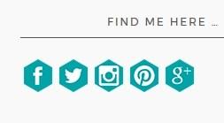 custom social follow buttons