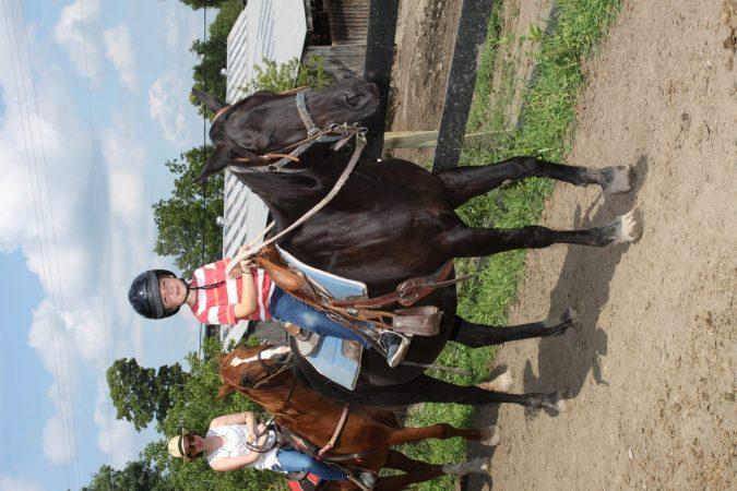 training horses is like raising kids boy on horse