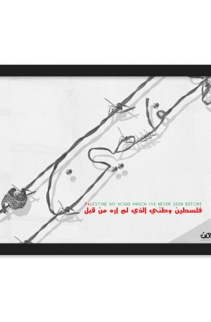 Palestine my home which i've never seen before -Framed matte paper poster-02