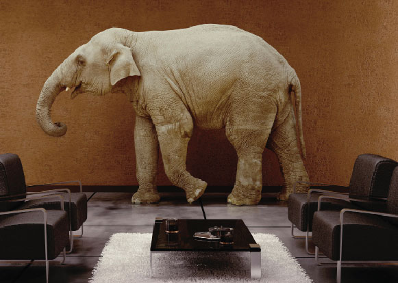 Elephant in the Room   How Has Anxiety Affected You, Your Family or ...