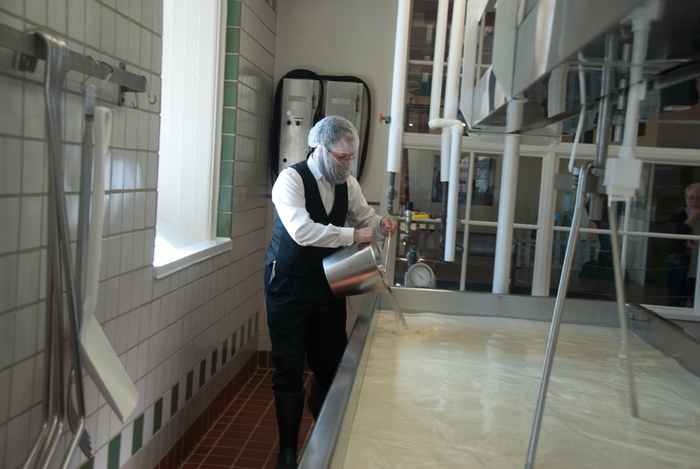 Rabbi Zalman Krems adding rennet to the milk at Shelburne Farms Creamery in Vermont.