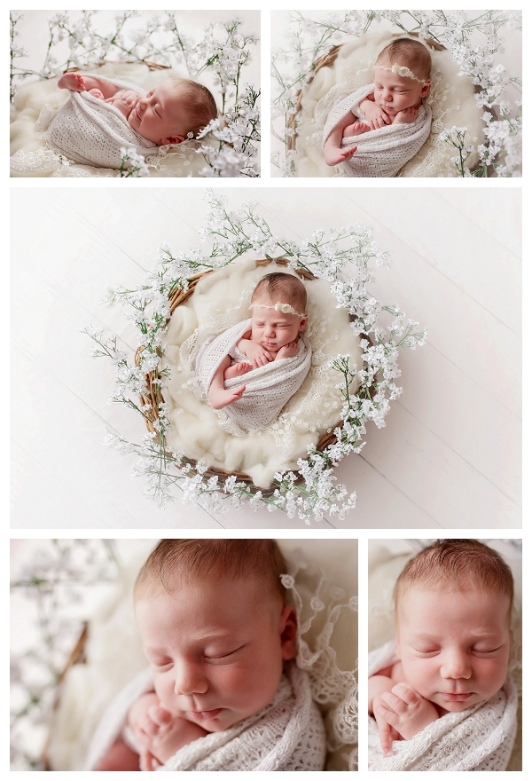 I love incorporating flowers in to newborn sessions particularly during our canberra spring the images captured at a newborn session are some of the most