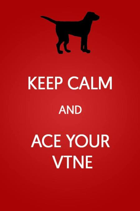 Keep calm and ace your VTNE test. Working on a veterinary technician career. Get some help to pass the vet tech test.