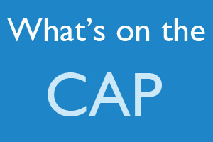 0baf33ce9e3 What s on the CAP-The Certified Authorization Professional