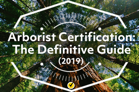 Arborist Certification: The Definitive Guide (2019)