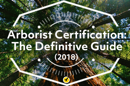 Arborist Certification: The Definitive Guide (2018)
