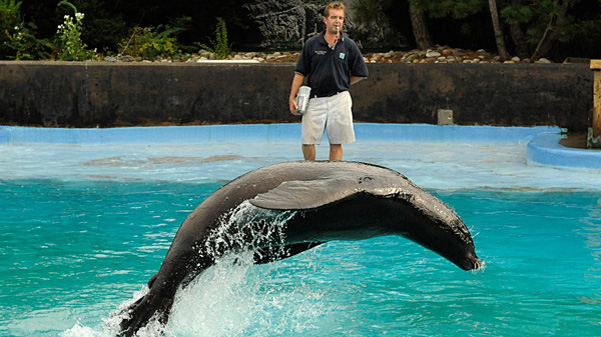 Free Or Pay What You Wish Zoos And Aquariums In Nyc
