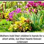 Favorite Quotes About Mothers