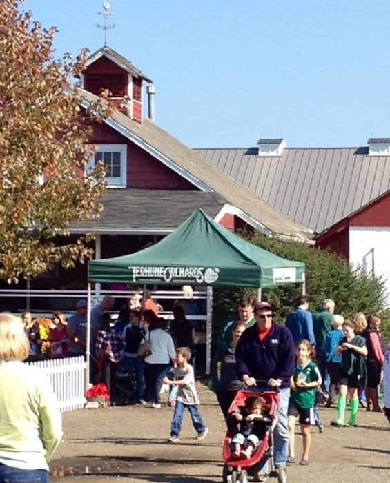tehrune orchards fall festival