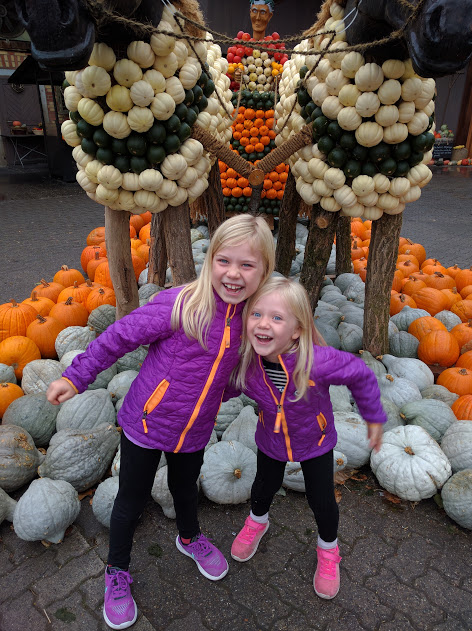 Pumpkin Patch and Brunch at Jucker Farm