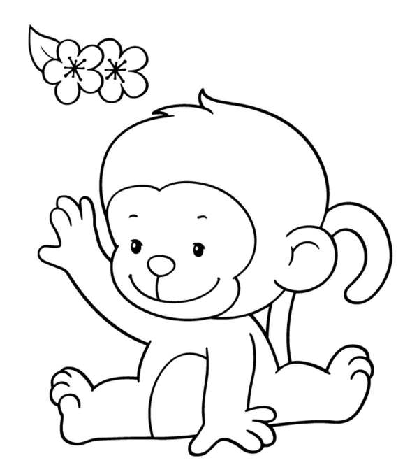 coloring pages of monkeys # 4