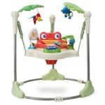 Fisher-Price Rainforest Jumperoo – $65.00