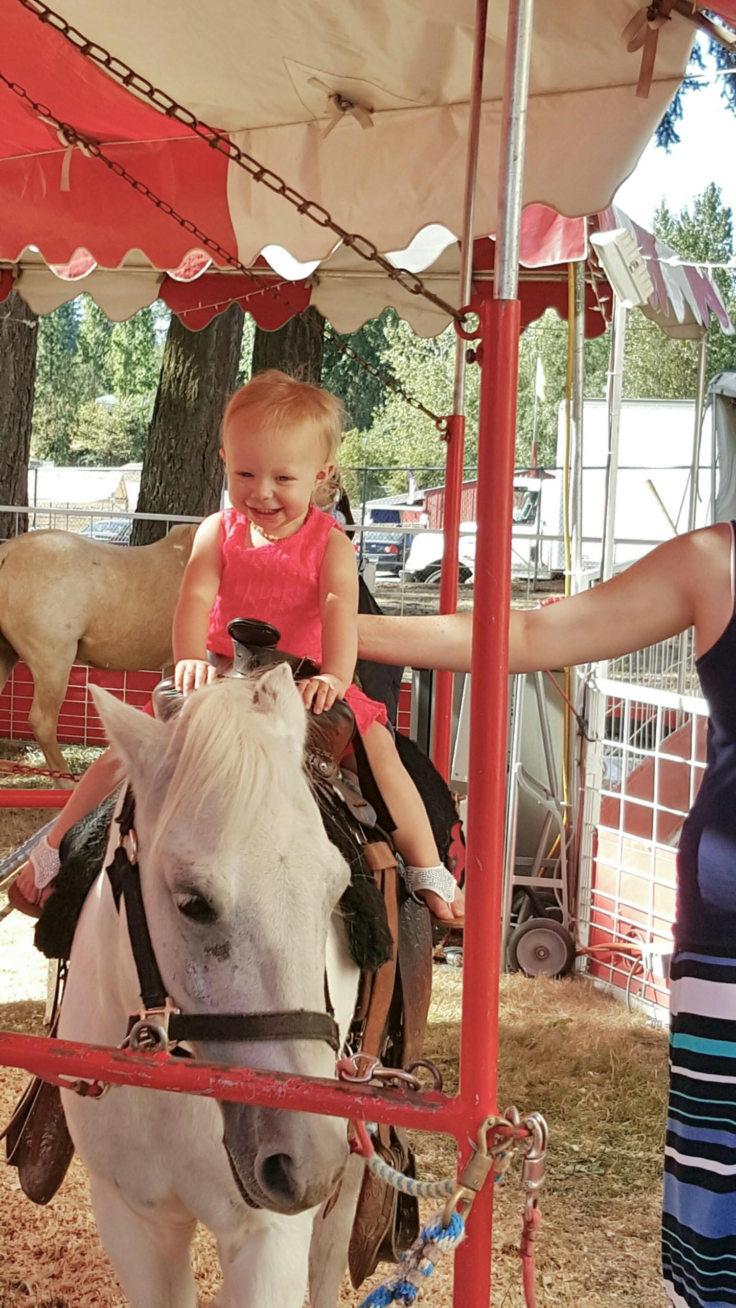 2 Days of Fun at the Clark County Fair in Ridgefield, WA