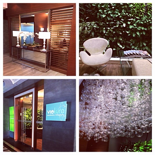 Picstitch of all the entrance to Vietura and the vertical garden in the lounge. I wish I could do a vertical garden like this in my living room.