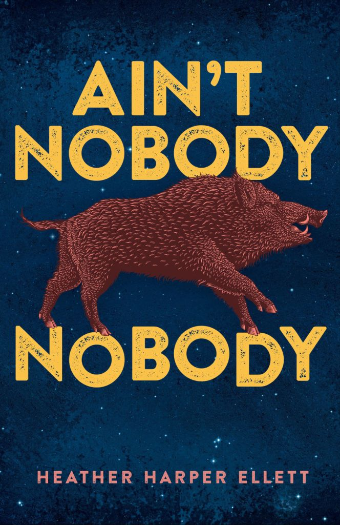 Ain't Nobody Nobody book cover image