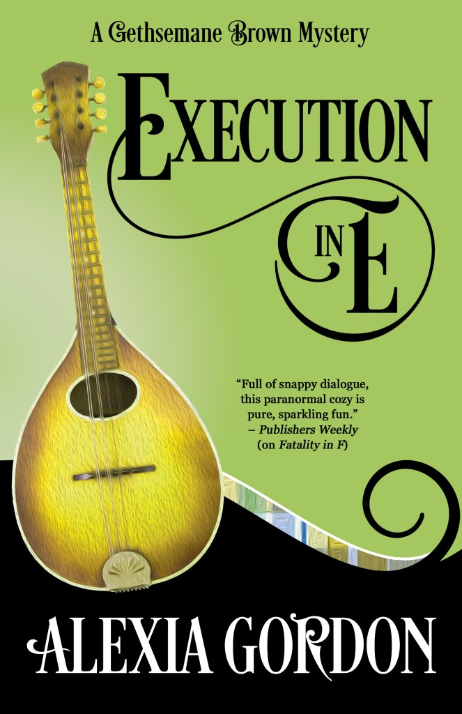 Cover image for Execution in E