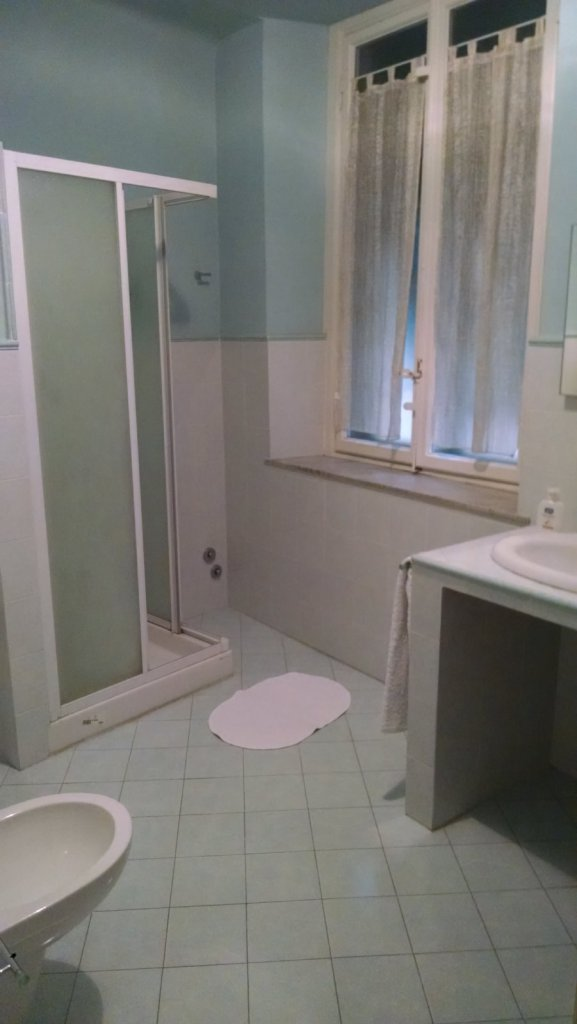 The shower space in the larger bathroom.