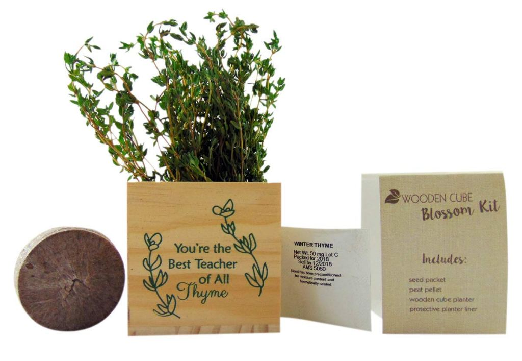 plant teacher gift - www.mommininapinch.com #teachergifts