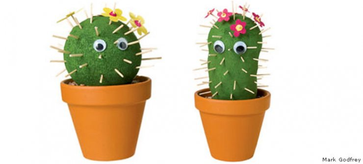 Cactus Love Mommo Design