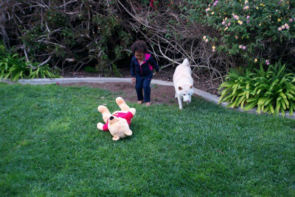 Girl and dog find Pooh in the grass