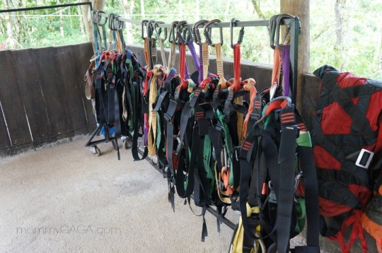 Harnesses for zip line adventure, Costa Rica