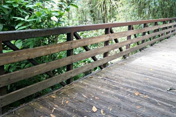 Crossing the bridge in El Yunque Rainforest