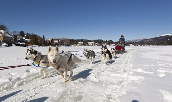 Dog sledding, Adirondacks