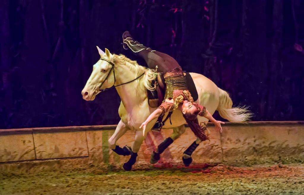 Trick riding Odysseo