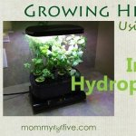 6 Best Indoor Hydroponic Grow Systems and Garden Kits 2018