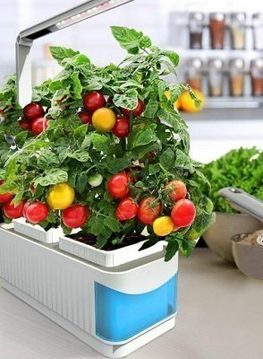 Finether Hydroponic Growing System Kit with LED Grow Light