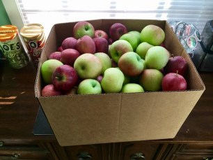 Fall is apple season! Looking for ideas what to cook or bake with all of those apples? Apple chip recipe, apple bread recipe, apple cake recipe, apple cider recipe, and other apple recipes!