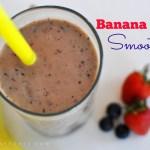 Vega Banana Berry Smoothie