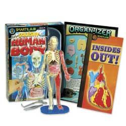 Review - SmartLab Toys Squishy Human Body Anatomy Science Kit