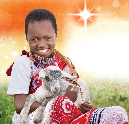 World Vision Gift Catalog Goat