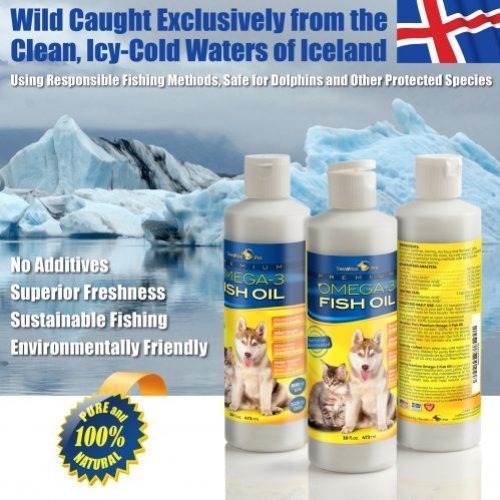 Omega 3 Fish Oil For Pets Icy Water