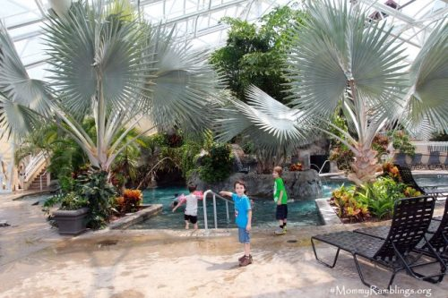 Biosphere Pool