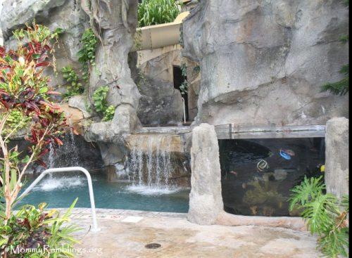 Crystal Springs Biosphere Pool-Resort-Family Staycations