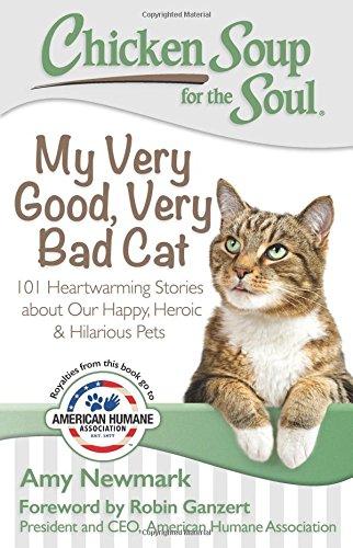 my verygood very bad cat